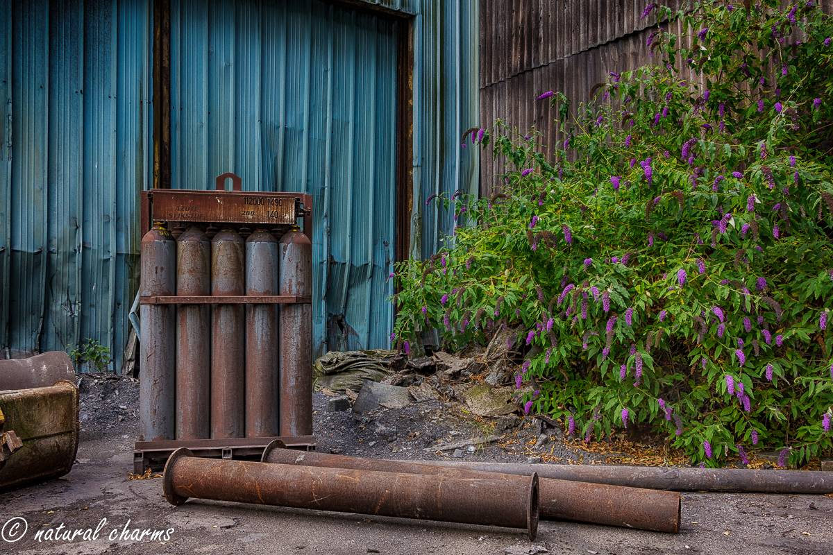naturalcharms-oldcharms-urbex-fotografie-industrie-orange factory blue tower-5-2